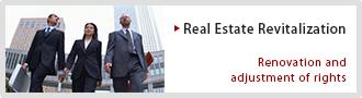 Real Estate Revitalization